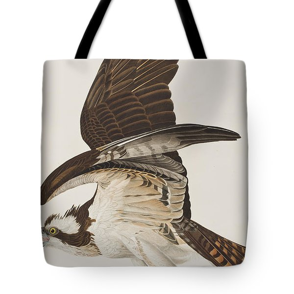 Fish Hawk Or Osprey Tote Bag