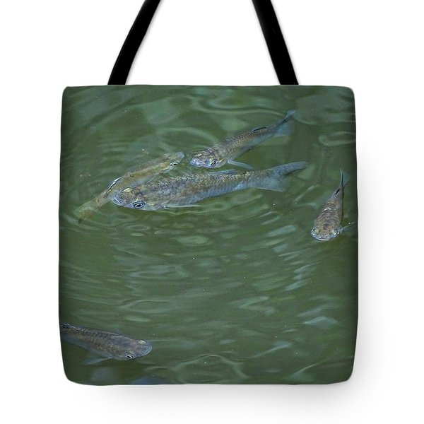 Tote Bag featuring the photograph Fish Love School by Cindy Charles Ouellette