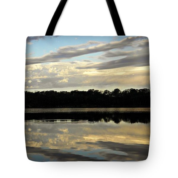 Tote Bag featuring the photograph Fish Ring by Chris Berry