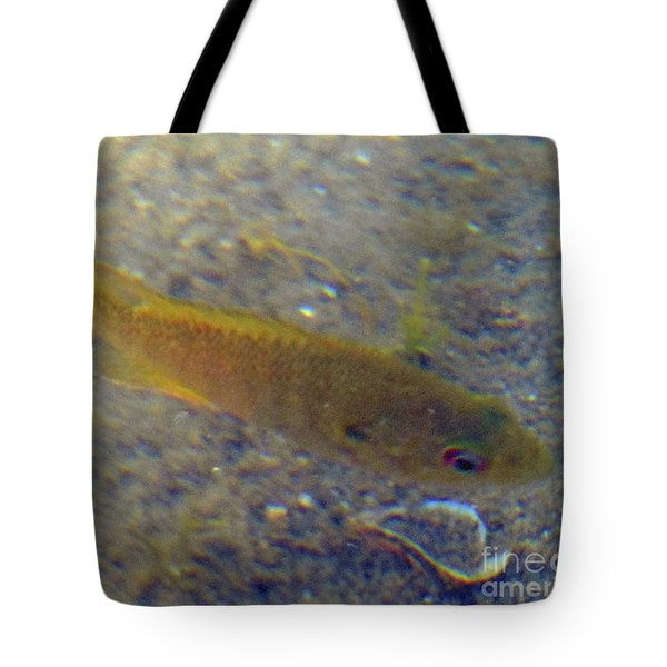 Fish Sandy Bottom Tote Bag