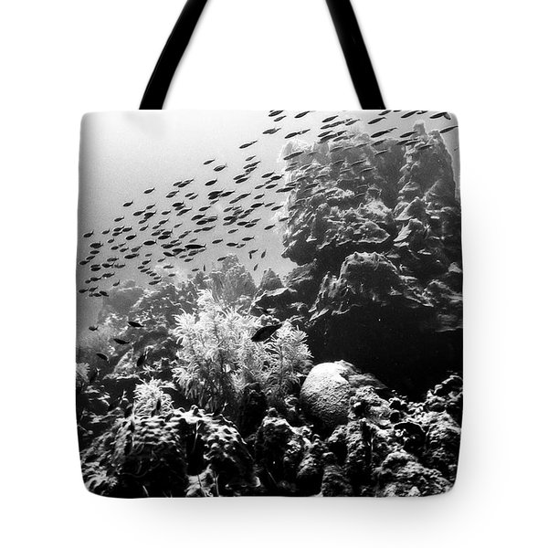 Fish School Rainbow Tote Bag