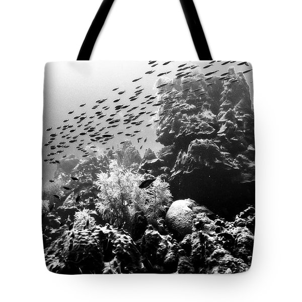 Tote Bag featuring the photograph Fish School Rainbow by Perla Copernik