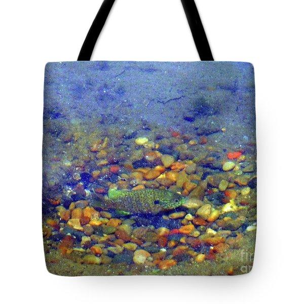 Fish Spawning Tote Bag