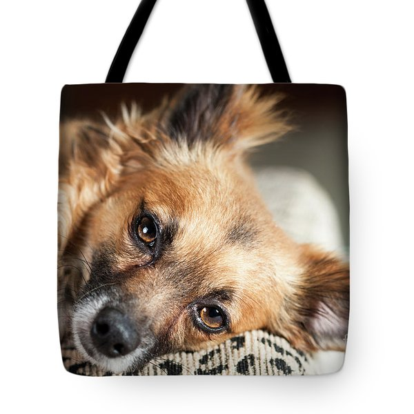 Fisher Tote Bag by Lawrence Burry