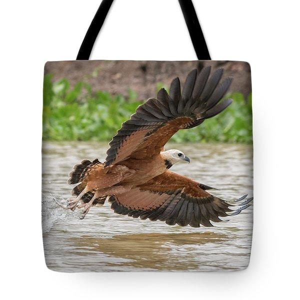 Fishing Hawk Tote Bag