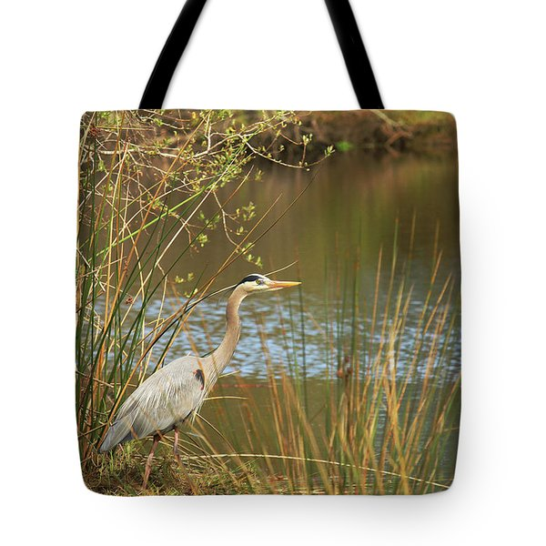 Tote Bag featuring the photograph Fishing Oceano Lagoon by Art Block Collections