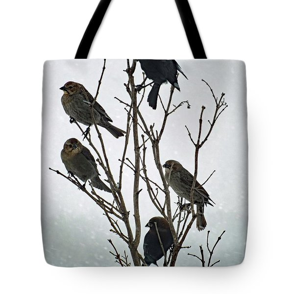 Five Cowbirds Sitting In A Tree Tote Bag