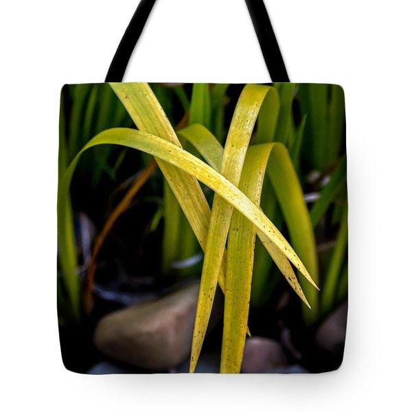 Five Draped Leaves Tote Bag