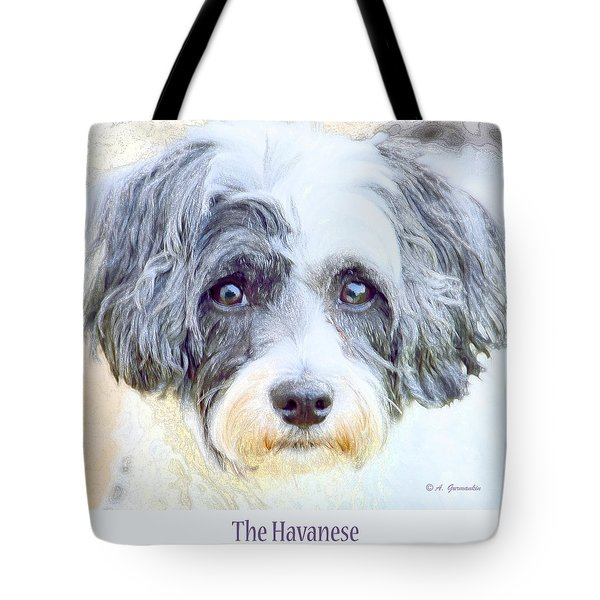 Five Year Old Havanese Dog Tote Bag