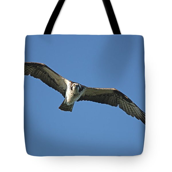 Fixation Tote Bag