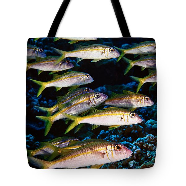 Fla-150811-nd800e-26035-color Tote Bag