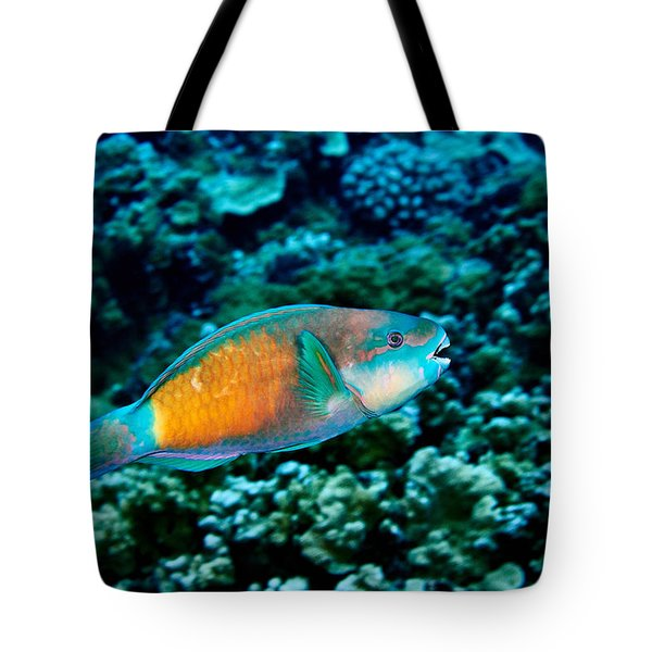 Fla-150811-nd800e-26049-color Tote Bag
