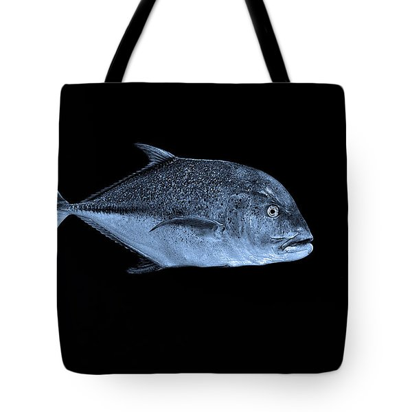 Fla-150811-nd800e-26052-bw-blue Tote Bag