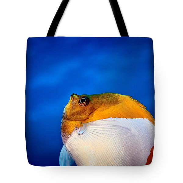 Fla-150811-nd800e-26086-color Tote Bag by Fernando Lopez Arbarello