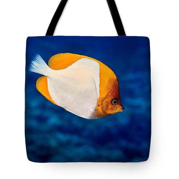 Fla-150811-nd800e-26087-color Tote Bag by Fernando Lopez Arbarello