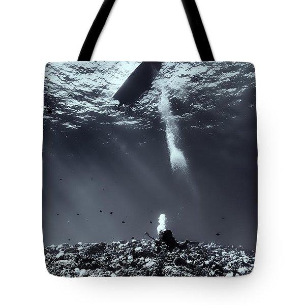 Fla-151028-nd800e-107-bw-selenium Tote Bag by Fernando Lopez Arbarello