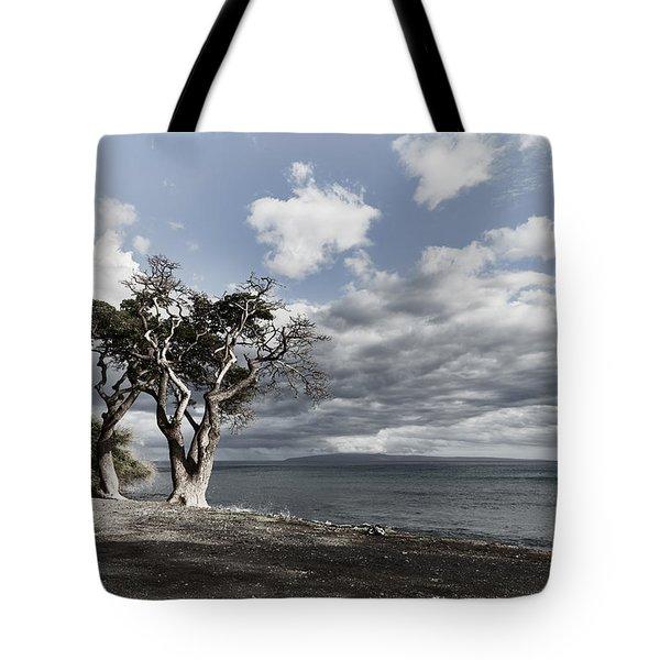 Fla-150717-nd800e-25953-color Tote Bag by Fernando Lopez Arbarello