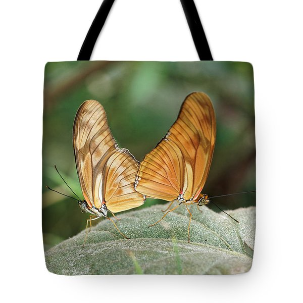 Tote Bag featuring the photograph Flambeau Butterfly - 2 by Paul Gulliver