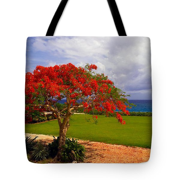 Flamboyant Tree In Grand Cayman Tote Bag