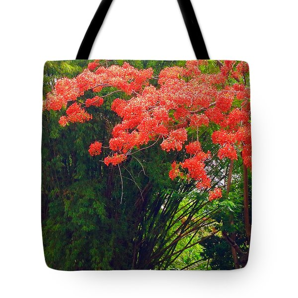 Flamboyant With Bamboo Tote Bag