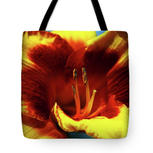 Flame Daylily 1238 H_2 Tote Bag