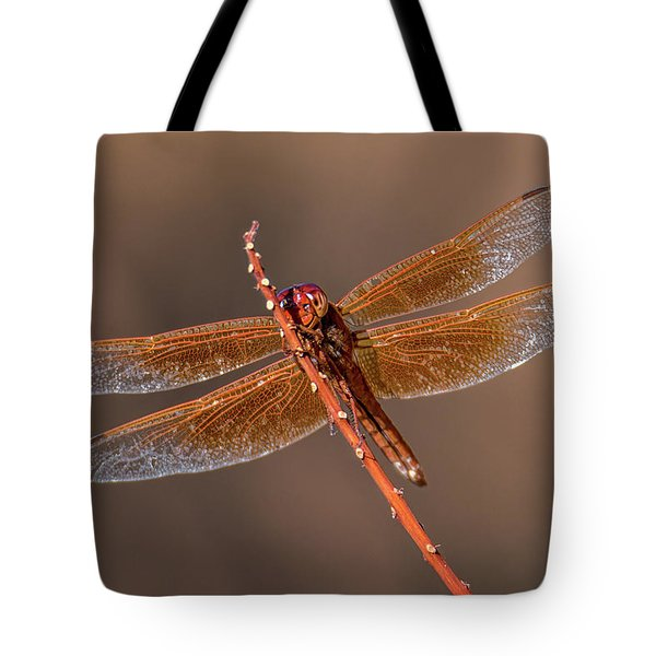 Tote Bag featuring the photograph Flame Skimmer Close Up by Dan McManus