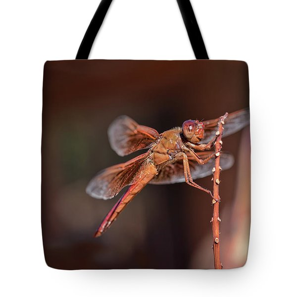 Tote Bag featuring the photograph Flame Skimmer by Dan McManus