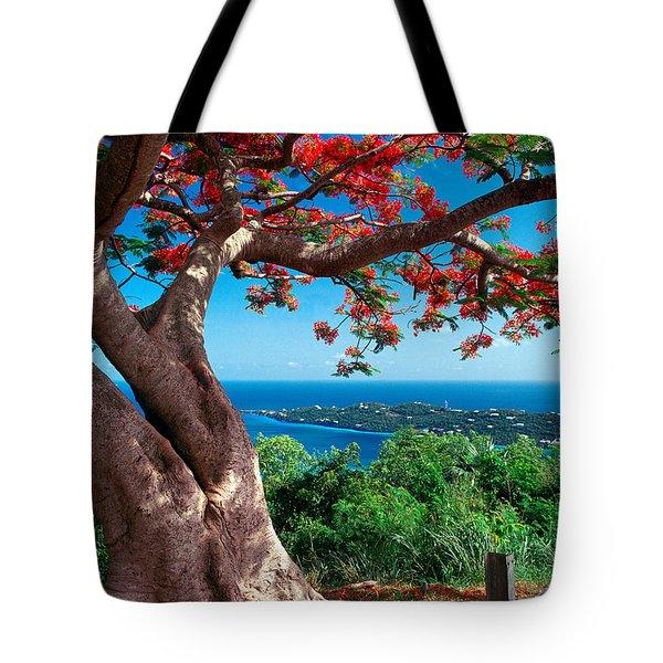 Flame Tree St Thomas Tote Bag