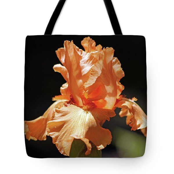 Tote Bag featuring the photograph Flaming Floral by Deborah  Crew-Johnson
