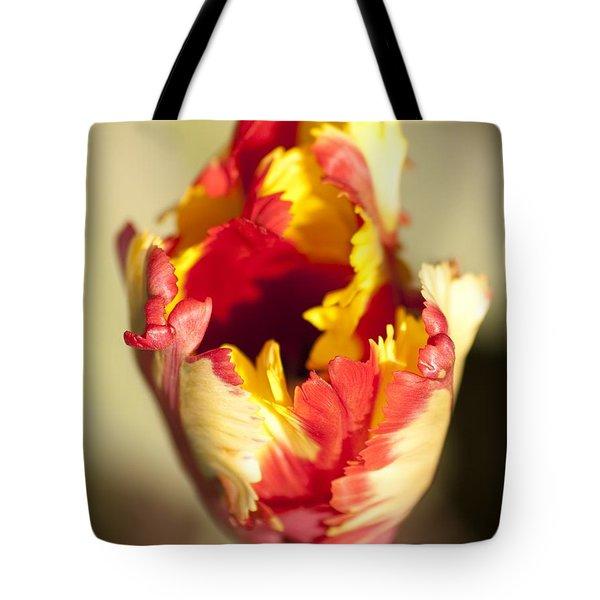 Flaming Parrot Tote Bag