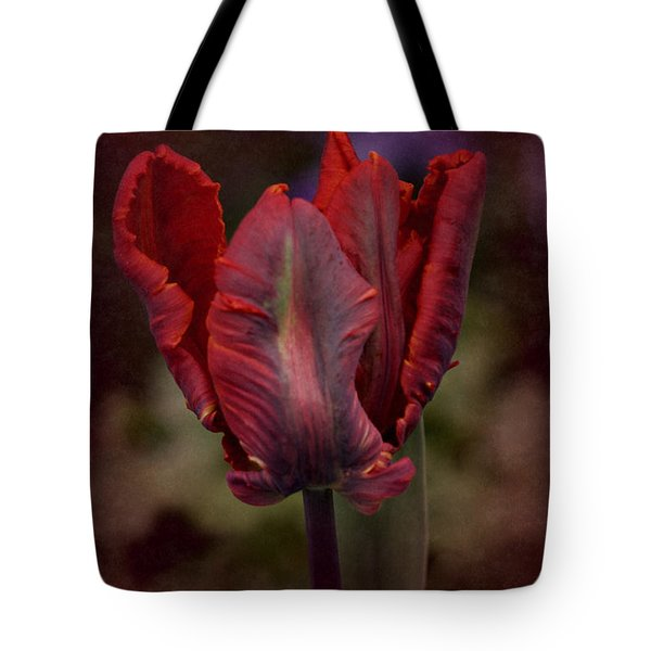 Tote Bag featuring the photograph Flaming Tulip by Richard Cummings
