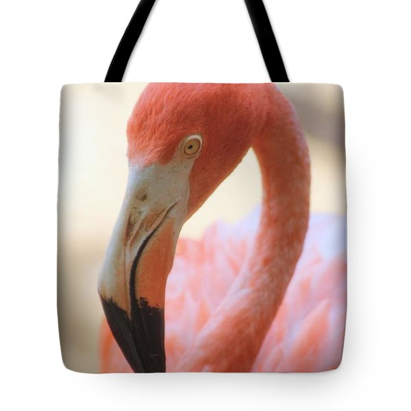 Tote Bag featuring the photograph Flamingo 2 by Elizabeth Budd
