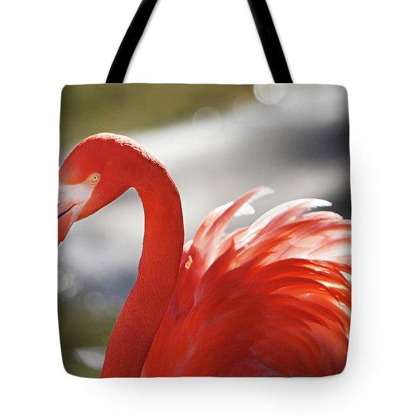 Flamingo 2 Tote Bag