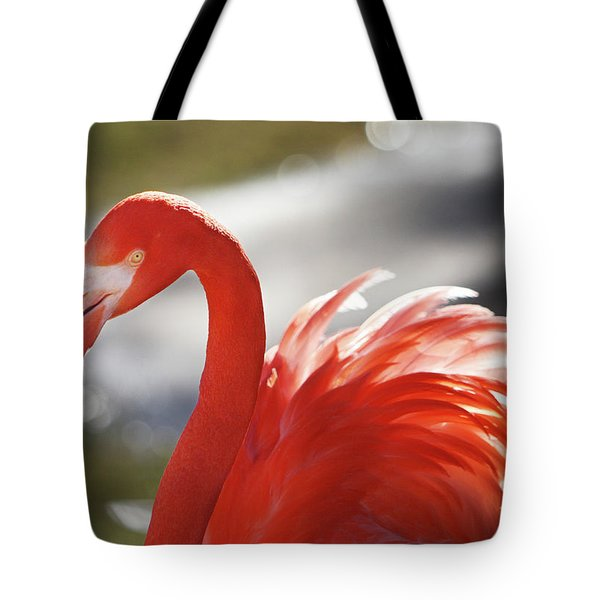 Tote Bag featuring the photograph Flamingo 2 by Marie Leslie