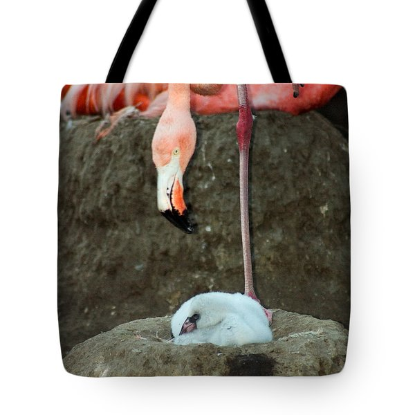 Flamingo And Chick Tote Bag by Anthony Jones