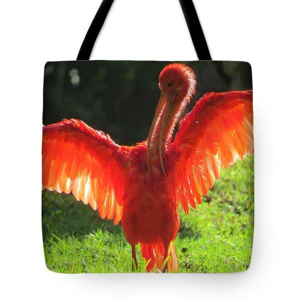 Flamingo Backlit Tote Bag
