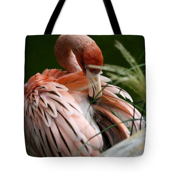 Flamingo Boudoir Tote Bag