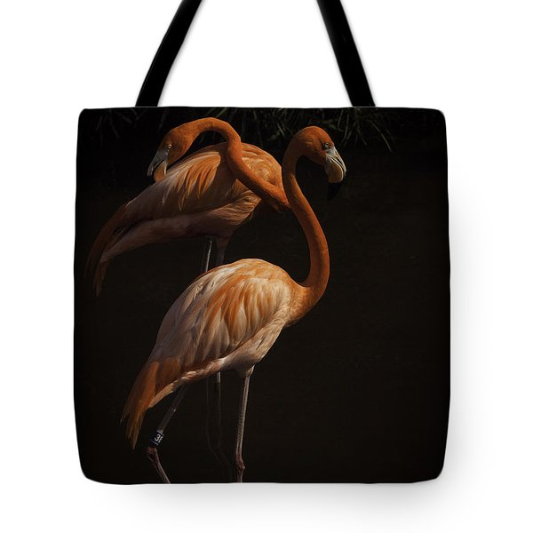 Flamingo Delight Tote Bag