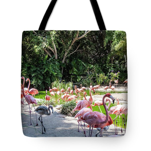 Flamingo Flock Tote Bag by Daniel Hebard