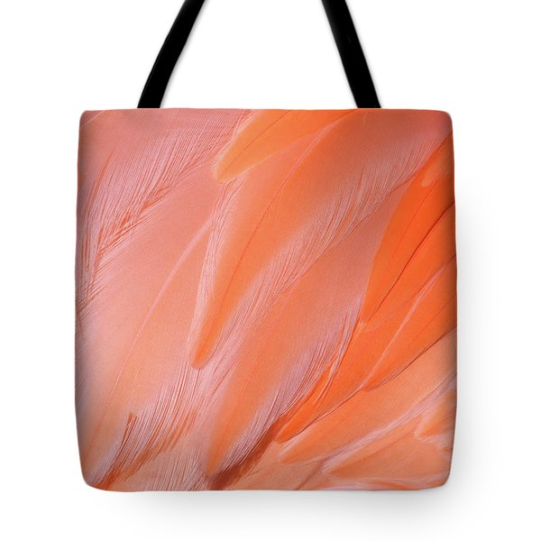 Tote Bag featuring the photograph Flamingo Flow 4 by Michael Hubley
