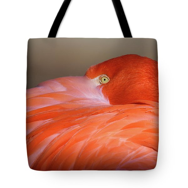 Tote Bag featuring the photograph Flamingo by Michael Hubley