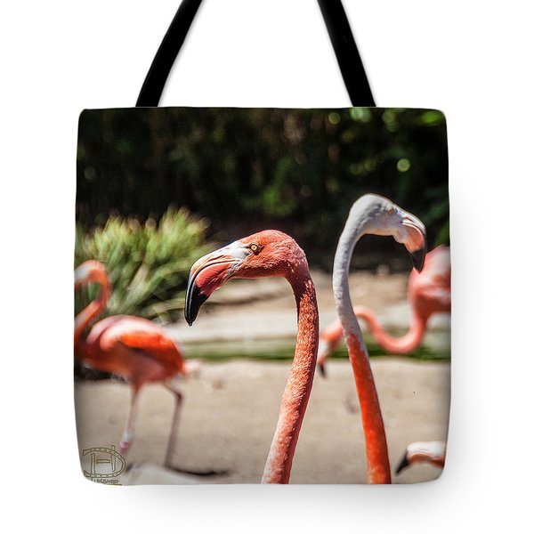 Flamingo Pair Tote Bag by Daniel Hebard