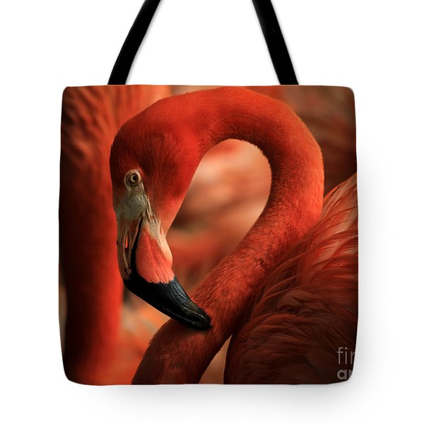 Flamingo Poised Tote Bag