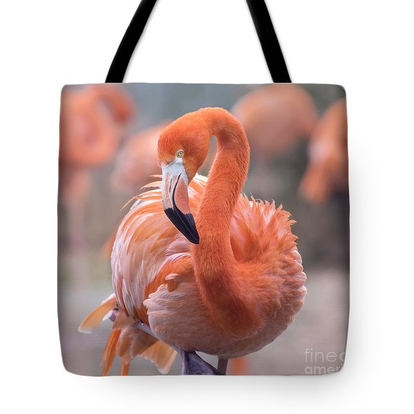 Flamingo, The Orange Beauty Tote Bag