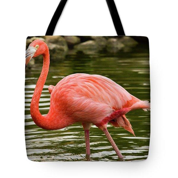 Flamingo Wades Tote Bag