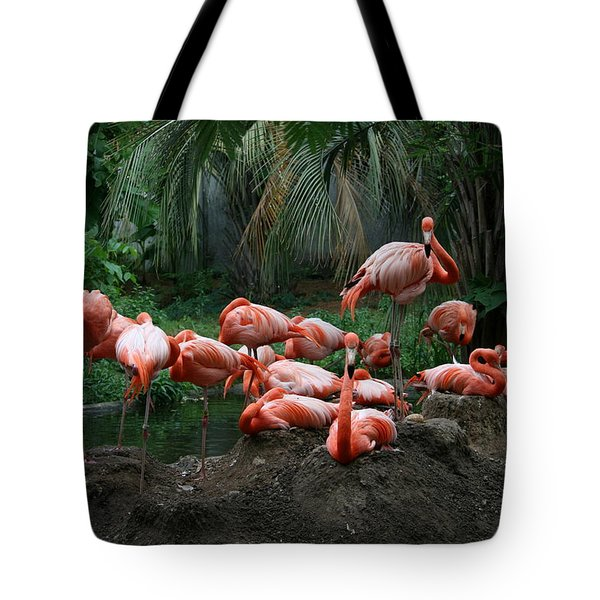 Tote Bag featuring the photograph Flamingos by Cathy Harper