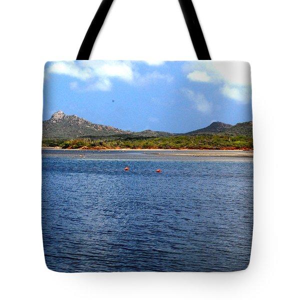 Flamingo's Home Tote Bag