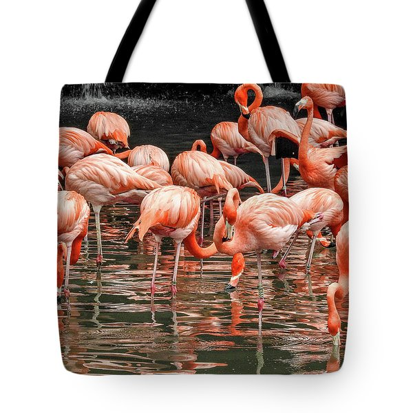 Tote Bag featuring the photograph Flamingo Looking For Food by Pradeep Raja Prints