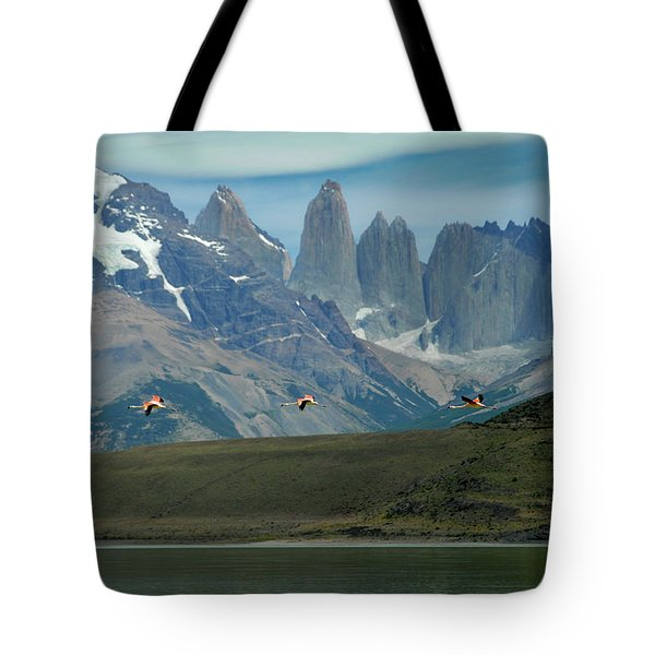 Flamingos Over Lago Nordenskjold Tote Bag