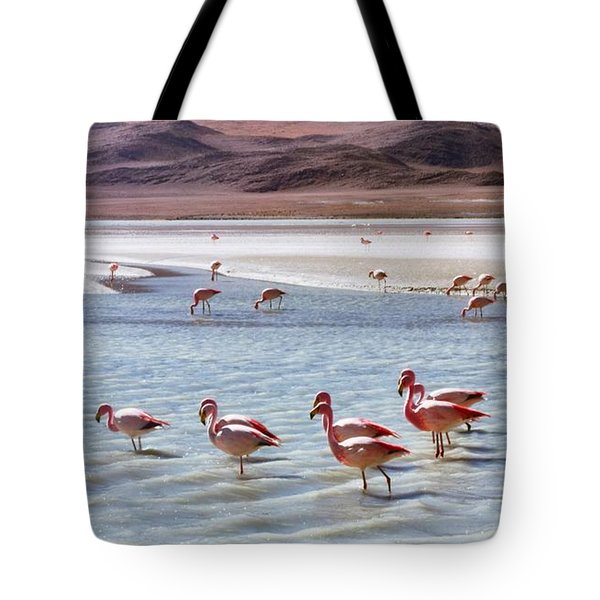 Flamingos Tote Bag by Sandy Taylor